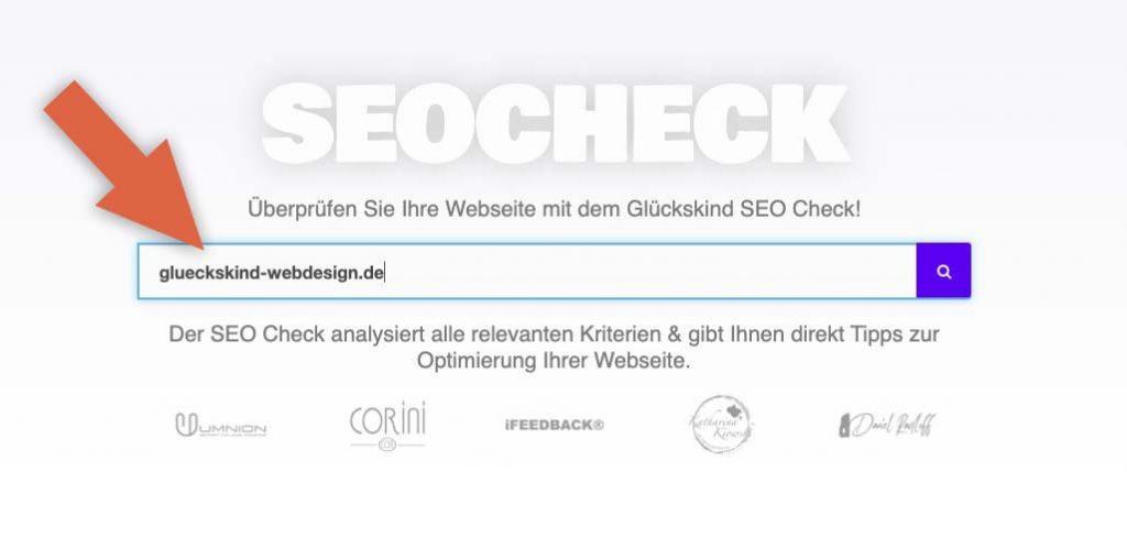 SEO Check domain eingabe